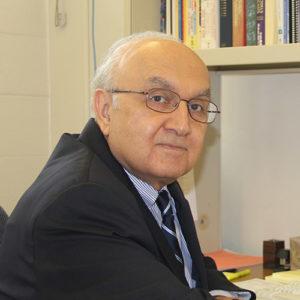 Photo of S. Hamid Fakhraei