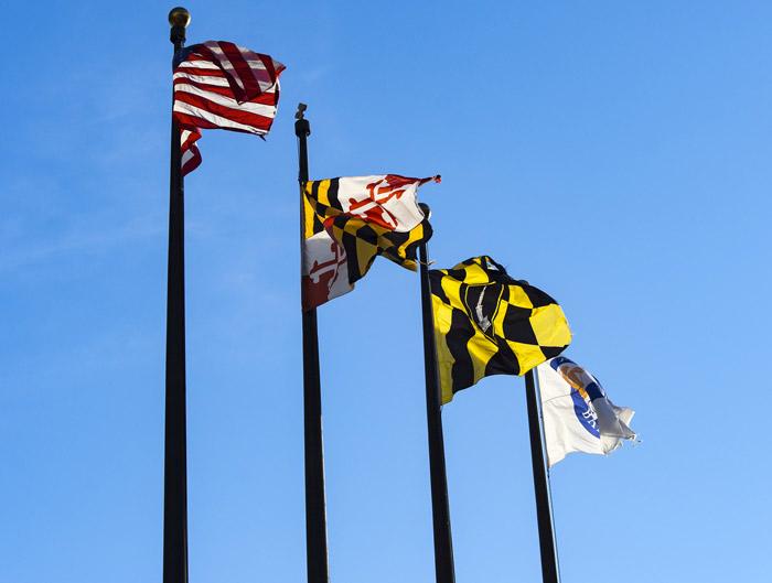 Maryland Medicaid eHealth Statistics